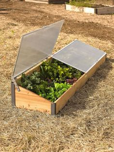 Cedar Cold Frame for raised bed gardening. This handsome Cold Frame is sized to fit our elevated raised bed and will extend your growing season by months!