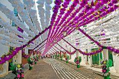 Festas do Povo de Campo Maior 2015 Campo Maior Flower Festival #CampoMaior #FlowerFestival