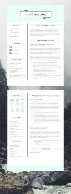 Elegant Resume Template 110440 - Premium line of Resume \ Cover - apple pages resume template