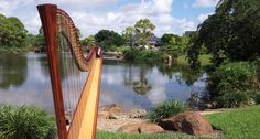 Morikami Museum in Delray Beach, Florida is such an idyllic setting for a wedding ceremony with Boca Raton Harpist Esther Underhay @Morikamimuseum @elegantharp #weddingharpist #Floridaharpist #BocaRatonharpist