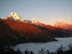 View from Kobra Ridge (Annapurna Region)