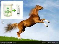 This barrier is sold in so many horse suppliers and it is really thin and runny and does not stay on the area that it is applied. Our is far thicker and stays where it is needed to cool, clean and assist healing.  www.rosarivera.flp.com