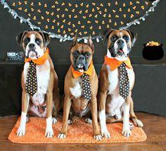 Party tie!!!