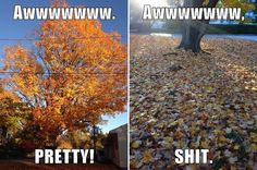 Fall in New England in a nutshell.