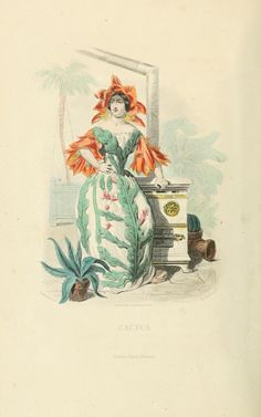 Cactus, The Flowers Personified (1847). Images by the great Parisian cartoonist J.J Grandville from his Les Fleurs Animées – his last work, published posthumously.
