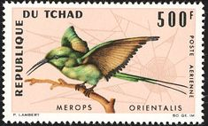 Green Bee-eater stamps - mainly images - gallery format