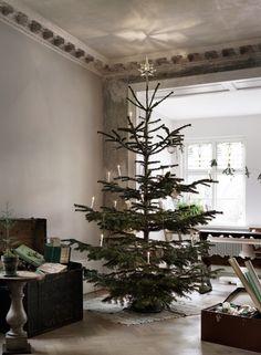 X-mas tree by Malin Persson | Photo Petra Bindel