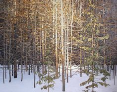 Peter Rotter - Evening Warmth, 36 x 48. Oil on Canvas