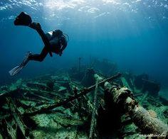 Some of the Best Naples, Florida Scuba Diving Shops