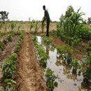 La crisis del agua, la agricultura y la soberanía alimentaria