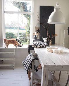 ✖ T H U R S D A Y ➕ ▫h a v e  a  n i c e  d a y▫ Onze zwart witte kat Grover ligt al de hele ochtend op het klepbankje. Ziet er gehavend uit. Heeft zwarte vlekken en wat bloed op zijn kopje. Het lijkt wel of hij is aangereden door een auto. Ik kijk het even aan. Hoe het over een uur of twee uren is. En anders maar of sowieso ritje dierenarts. Bah, wat heb ik daar een hekel aan. Dat er wat met de dieren is. En dat je niet weet wat het is of hoe dit afloopt. Hij ligt nu in ieder geval lekker…