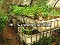 aquaponics better homes and gardens - best plants for indoor aquaponics.aquaponics raft system design 7852783489 #homeandgarden #homeaquaponicssystems