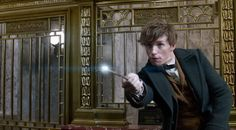"""ANDPOP   Our First REAL Look At """"Fantastic Beasts and Where To Find Them"""" Is Here --- And It's Fantastic"""