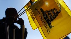Tea Party lashes out at 'Monsanto Protection Act' - http://ontopofthenews.net/2013/04/03/top-news-stories/u-s-a-news/tea-party-lashes-out-at-monsanto-protection-act/