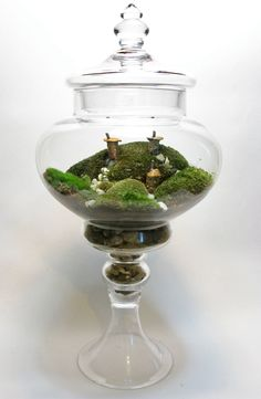 Apothecary Terrarium Gnome Village by FaceoftheEarth on Etsy, $100.00