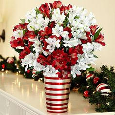 75 Blooms of Candy Cane Peruvian Lilies with Candy Cane Ceramic and other flowers & plants at ProFlowers.com