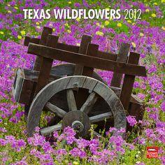 Texas Wildflowers 2012.