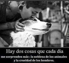 Hay dos cosas que cada día me sorprenden más: la nobleza de los animales y la crueldad de los hombres