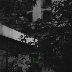 """Foxy"" by Ptaki Music Artwork, Warsaw, Cover Art, Album Covers, Digital, Outdoor, Desktop, Art Of Music, Outdoors"
