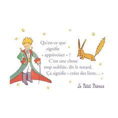 carte-postale-le-petit-prince-qu-est-ce-que-signifie-apprivoiser. Petit Prince Quotes, Little Prince Quotes, The Little Prince, Book Quotes, Words Quotes, Prince Drawing, Little Presents, Quote Citation, French Quotes