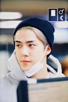 It looks like a prince charming 😍❤️ .