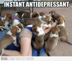 Best antidepressant ever. I would love it!