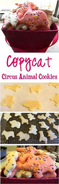 Copycat Circus Animal Cookies Recipe! ~ just like Mother's Animal Cookies... this fun cookie recipe will have you reminiscing and the kids begging for more!