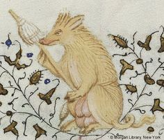 Spinning sow    Hours of Charlotte of Savoy.  MS M.1004 fol. 157v, Detail, pig  (15 of 168 ms pages found)   Jump to folio