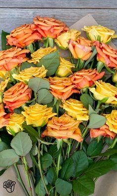 'Endless ✿ Summer' Rose Bouquet