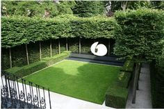This is Fascinating Evergreen Pleached Trees for Outdoor Landscaping 30 image, you can read and see another amazing image ideas on 80 Fascinating Evergreen Pleached Trees for Outdoor Landscaping… Garden Hedges, Garden Privacy, Garden Pool, Privacy Trees For Backyard, Privacy Hedge, Small Gardens, Outdoor Gardens, Cerca Natural, Casa Patio
