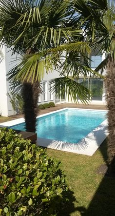 molitor swimming pool in paris piscine molitor life of pi  beautiful backyard pool very clear water is a trend ariane labre architect