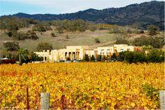 Darioush Winery - Napa Valley