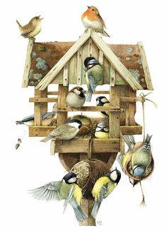 Marjolein Bastin Feeding House Canvas Print   CJ Wildlife (UK)