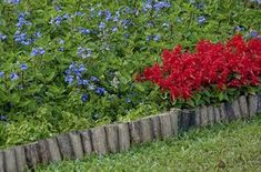 Small logs used vertically to create garden edging. Flower Bed Edging, Garden Edging, Garden Borders, Flower Beds, Garden Beds, Garden Fences, Meadow Garden, Cheap Flowers, Home Vegetable Garden