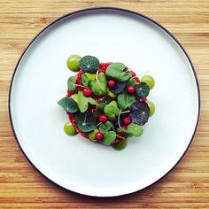 Lamb tartare, spruce emulsion, herbs & lingonberries