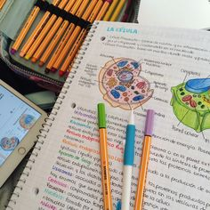 "mystudymethod: ""08.08.16 