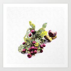 Rowan (Sorbus aucuparia L., Pyrus aucuparia Syn, Gaertner) Art Print by Karl-Heinz Lüpke - $15.60