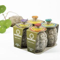 seedboms - friendly bombs that contain necessary nutrients to grow flowers virtually anywhere $9.95