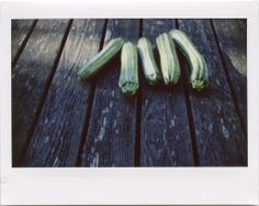 Rachel's zucchini is beautifully Italian in its simplicity... nothing to it but olive oil, garlic, basil, and zucchini.... (via Orangette)