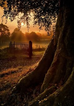 Sunset Gate, Ireland ..fall