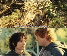 Love this exchange between Frodo and Sam, more said silently in their gazes than anything else  - Sam so loving and encouraging with that smile and Frodo so wanting to believe his Sam is right. They are almost father and child here. Hobbits do excel in saying a lot without saying a word. :)
