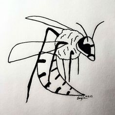 "Inktober Day 2 ""Divided"": wasp/bee mix"