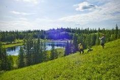 Hiking the Boreal Trail in Meadow Lake Provincial Park, #Saskatchewan