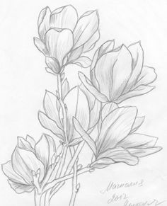 Flower Art Drawing, Flower Line Drawings, Flower Drawing Tutorials, Floral Drawing, Pencil Art Drawings, Drawing Sketches, Fabric Painting, Painting & Drawing, Watercolor Flowers