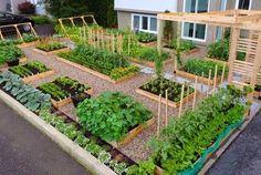 Vegetable Garden In Backyard Garden Design Garden Design