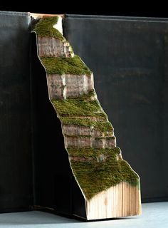 Carved book landscape by artist Guy Larameeafter two trips to brazil, artist guy laramée has realized a series of nine, carved book sculptures that meticulously illustrate the natural landscape.Found Inspiration Moving Forward Altered Book Art, Book Sculpture, Book Folding, Book Projects, Handmade Books, Book Crafts, Les Oeuvres, Amazing Art, Paper Art