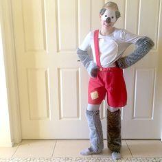 blinky-bill-book-character-costume