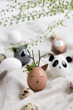Ostereier als Wildtiere bemalen - Waschbär, Reh, Eule oder Panda - Ostern wird ganz ohne Hase und Lamm zelebriert!