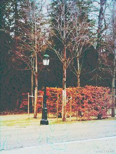 Lamp post; processed     aged / damaged effect
