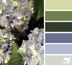 Hydrangea Hues Design Seeds Colour Pallettecolor Combinationscolor